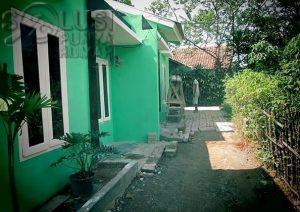 hijau-daun-04